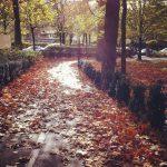 El otoño en mi Instagram