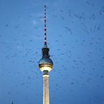 Berlín y Bruselas al otro lado del objetivo