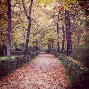 Parque del Retiro en otoño