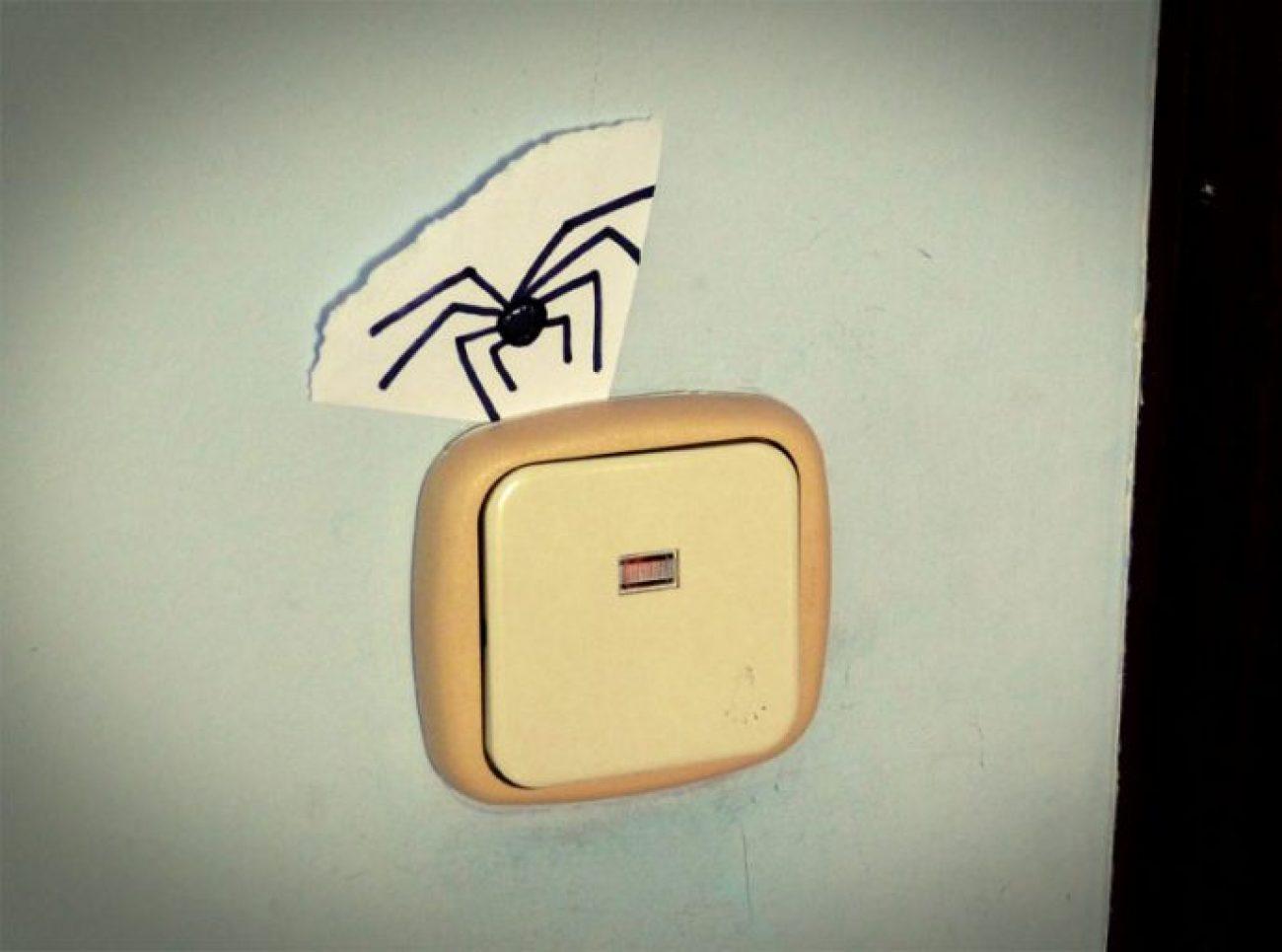 Cómo matar una araña sin derramar una sola gota de sangre (o lo que sea que segregan esos bichos)