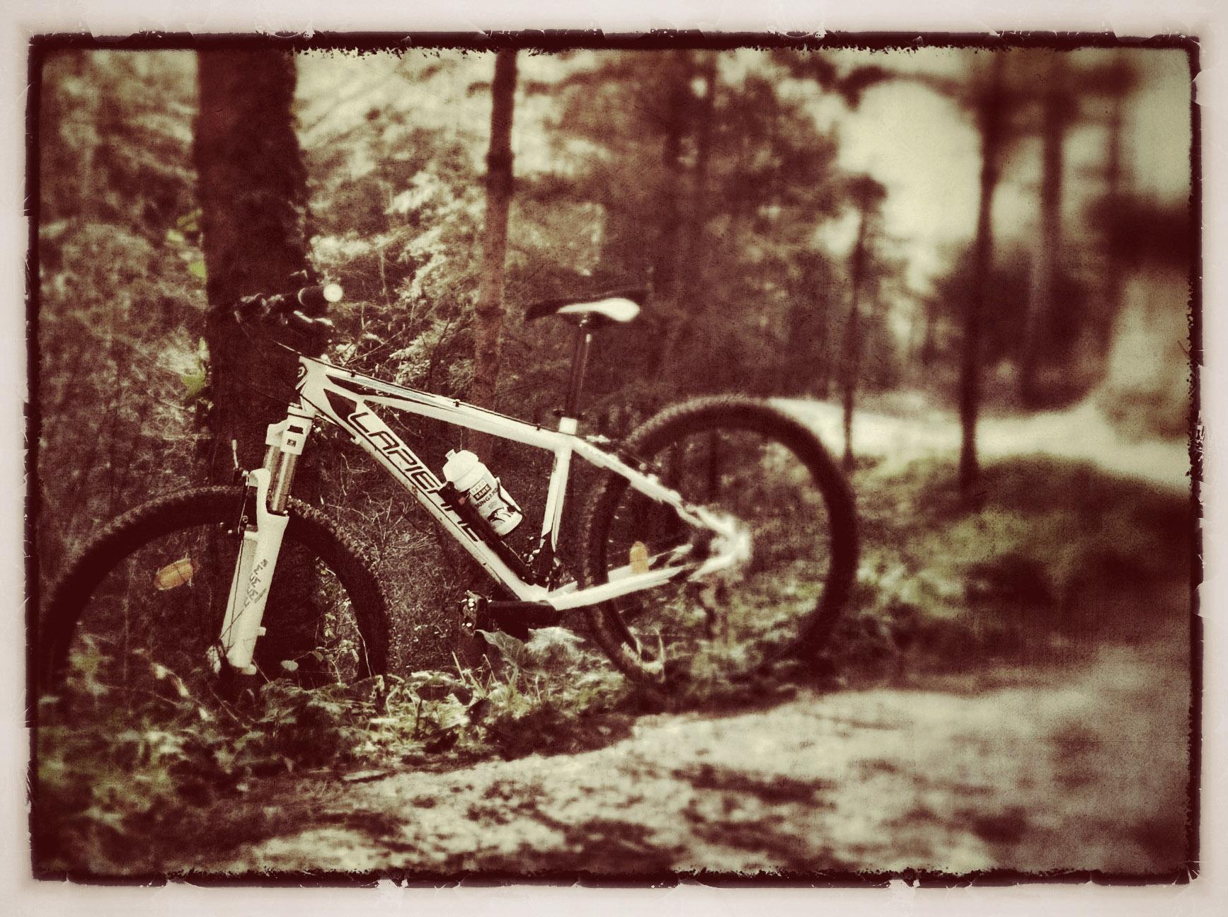 Mountain bike Lapierre Tecnic 100 Lady