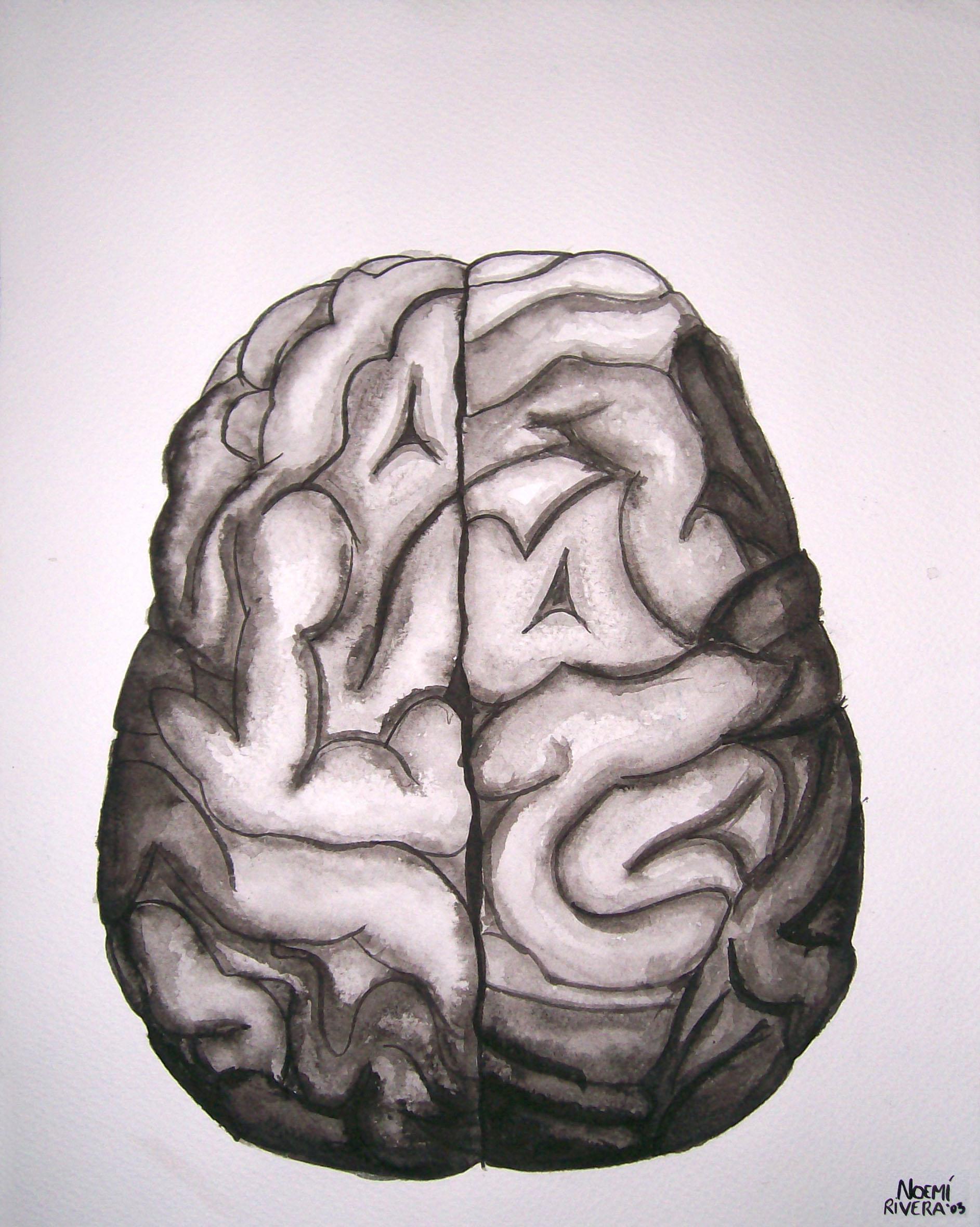 Cerebro a tinta china